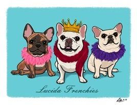 Lucida Frenchies.jpg