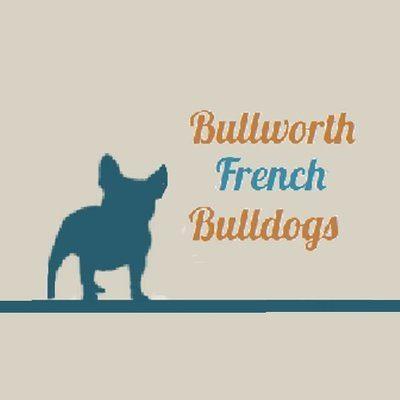 bullworth.jpg